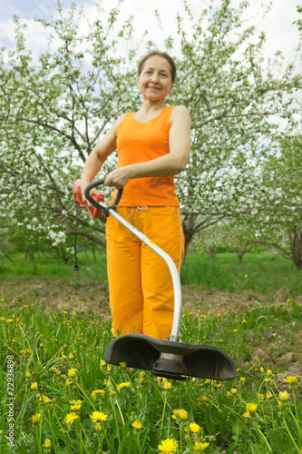 senior  woman gardener  cut grass