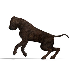 American Mastiff Dog. 3D rendering with clipping path and shadow