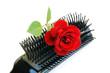 spazzola per capelli con rosa rossa