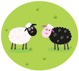 Black and white sheep. VECTOR ILLUSTRATION