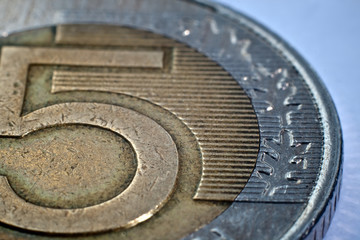 Macro close-up of polish zloty coin