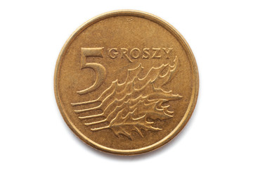Macro close-up of polish 5 groszy coin
