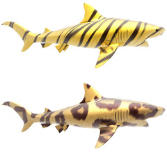 tiger shark in big cat fur on a white