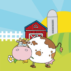 Chubby White Cow Eating A Daisy By A Silo And Barn