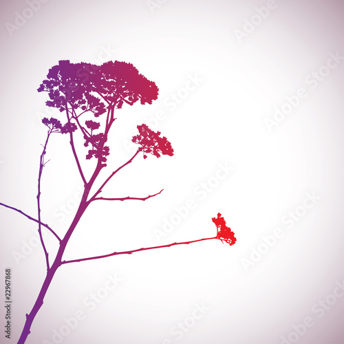 Flower silhouette. vector illustration