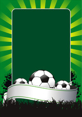 vector soccer banner with the balls