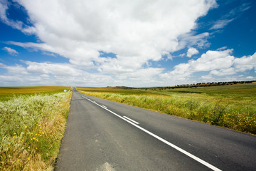 Country road in Alentejo, Portugal