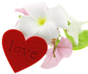 "coeur ""love"" fleuri, fond blanc"