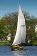 Sailing on lake Alster