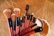 Professional cosmetics brushes