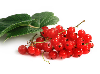 Sweet berries red currant