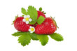 strawberry with hand made clipping path