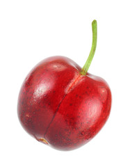 Single red cherry