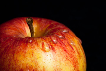 A wet red apple on black background