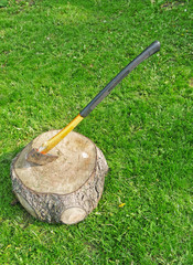 Ax in wood stump on sunny lawn