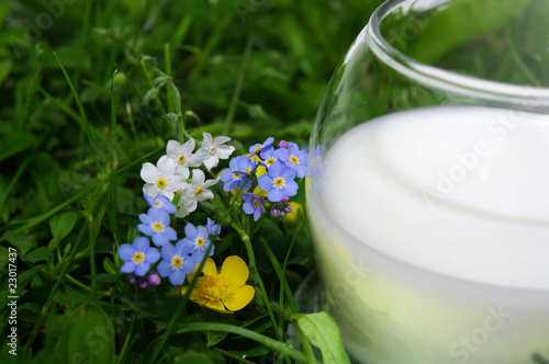 to have a drink of milk,verre de lait bio