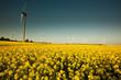 green energy, erneuerbare energie