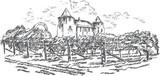 Vintage - vineyard and castle - 23025242
