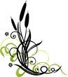 Schilf, Gräser, Schnörkel, filigran, floral, Ranke