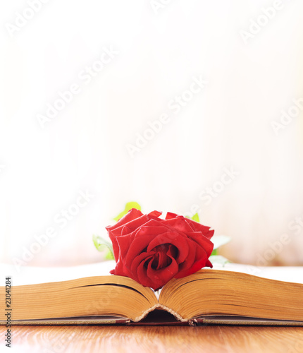 The rose lays on the book