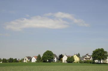 Roggenfeld und Häuser