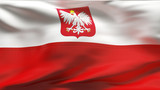 Creased Polish satin flag in wind with seams and wrinkles poster