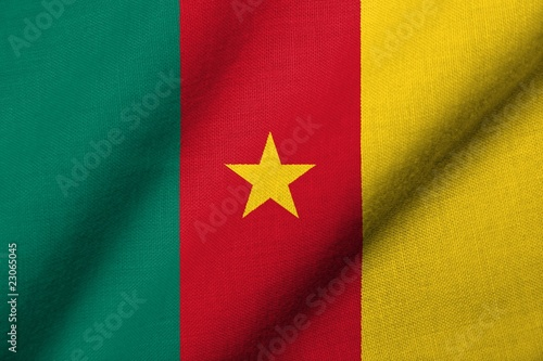 3D Flag of Cameroon waving