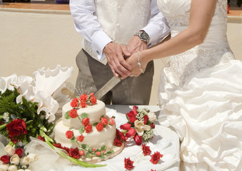 Bride and Groom Cutting the cake landscape view