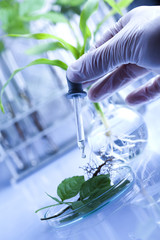 Laboratory, science, testing