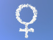 Female symbol from clouds