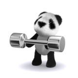 3d Weightlifter teddy poster