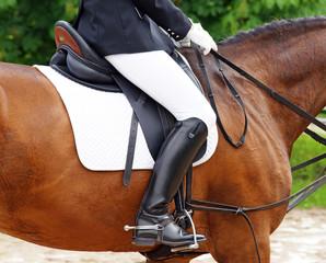 Detail Reitsport - Horse Woman