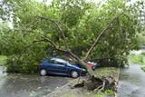 Storm damaged cars - Fine Art prints