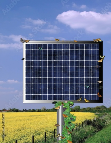 Solar cell collector beside a rape seed field