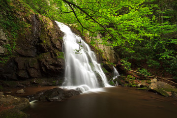 Spruce Flats Falls, the Great Smoky Mountains National Park