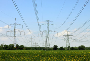 electrical towers and nature