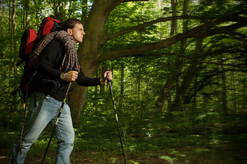 Man hiking through forested area