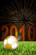 Fussball WM 2010