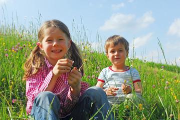 Lächelnde Kinder auf einer Almwiese