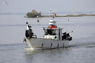 Pescatori in laguna - Friuli Venezia Giulia