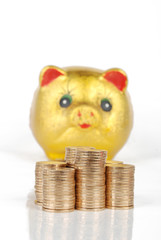 piggy bank with stcaks of coins
