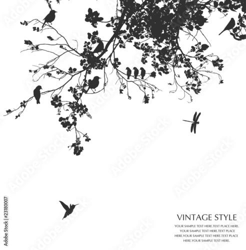 Foto op Canvas Vogels op boom tree
