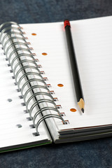 quaderno ad anelli con matita