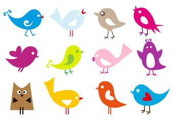 set of lovely birds