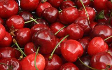 sweet cherry background