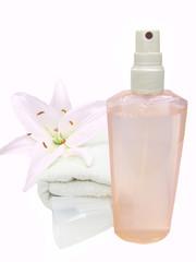plastic sprayer bottle pulverizer