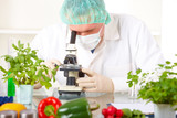 Researcher with microscope with a GMO vegetables in the laborato