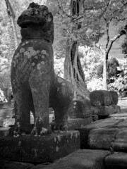 Angkor Wat - The bliss of Khmer art nb.46