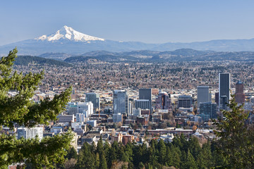 Beautiful Vista of Portland, Oregon
