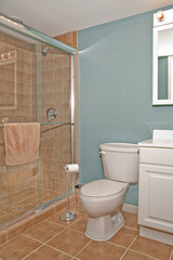 Bathroom Toilet and Shower Stall